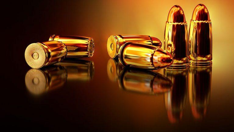 Verwahrungsmöglichkeiten für Ihre Schusswaffe